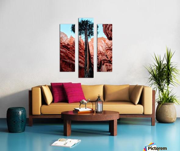 Bryce Canyon II Canvas print