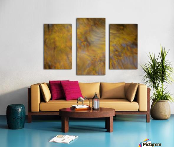 Autumnal swirls reflections 2 Canvas print