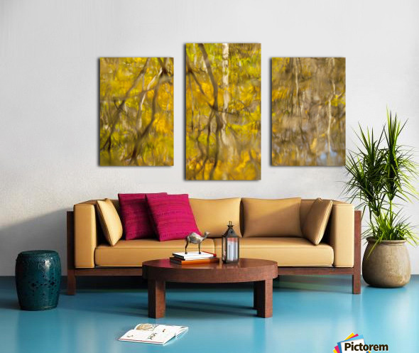 Autumnal swirls reflections Canvas print