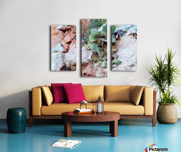 Cactus Impression sur toile