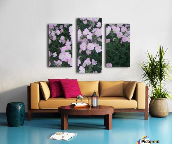 Flower Garden 2 Canvas print
