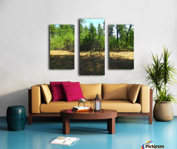 Deeper In Canvas print