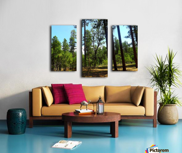 From A Differet Place Impression sur toile