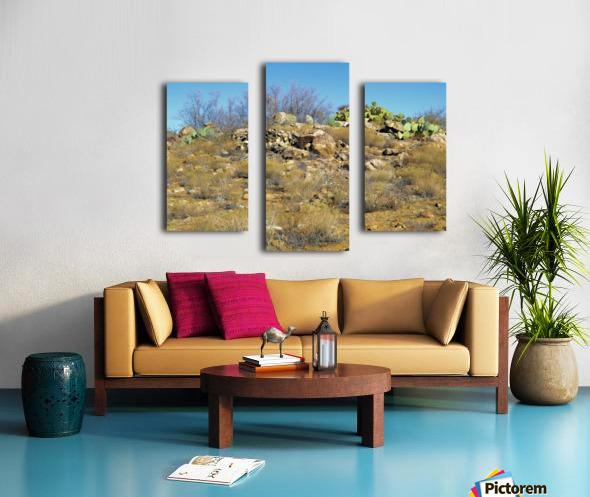 Rock n Cactus Canvas print