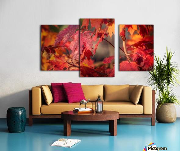 Rouge dautomne Impression sur toile