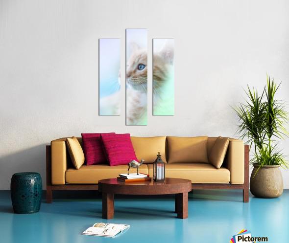catshadow Canvas print