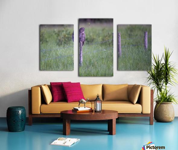 0077 - Great Grey Owl Fence Line Hunter Canvas print