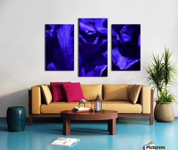 Purple Iris 1 Canvas print