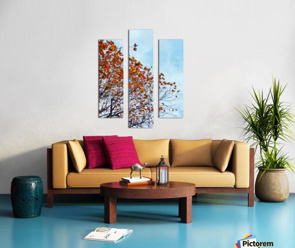 Tree branch with orange autumn leaves and blue cloudy sky Canvas print