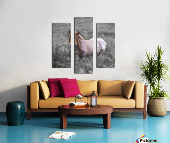 Wild Horses, New Forest Canvas print
