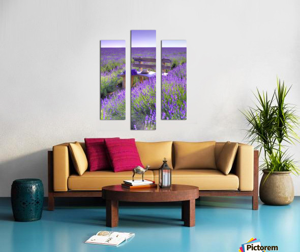 Bench in Lavender field Canvas print