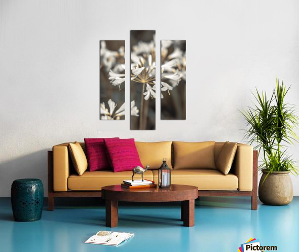 African Lilies Canvas print