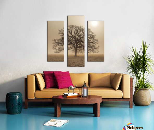 Trees in grass fields Canvas print