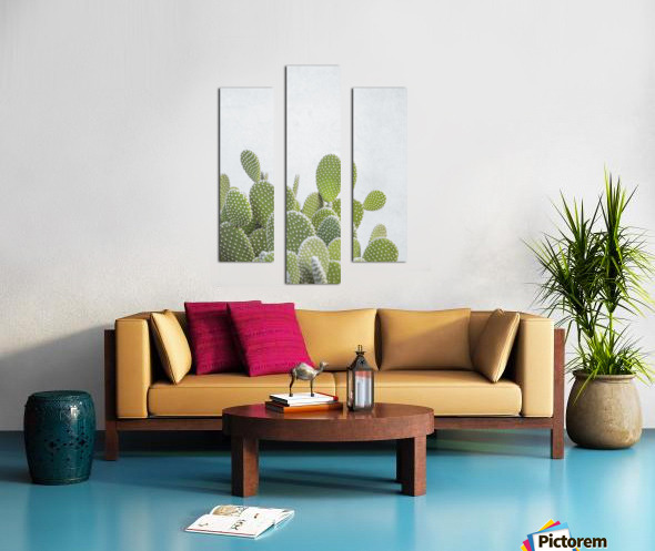 Cactus plant Canvas print