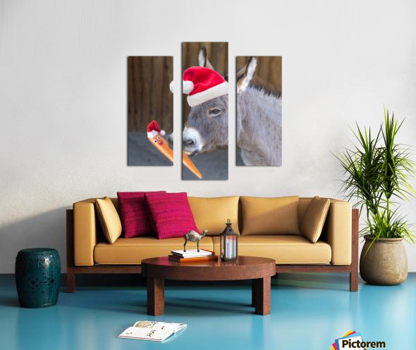 Donkey with Santa hat Canvas print
