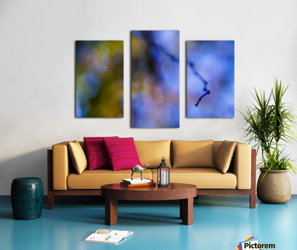 Automnejf 11  Canvas print