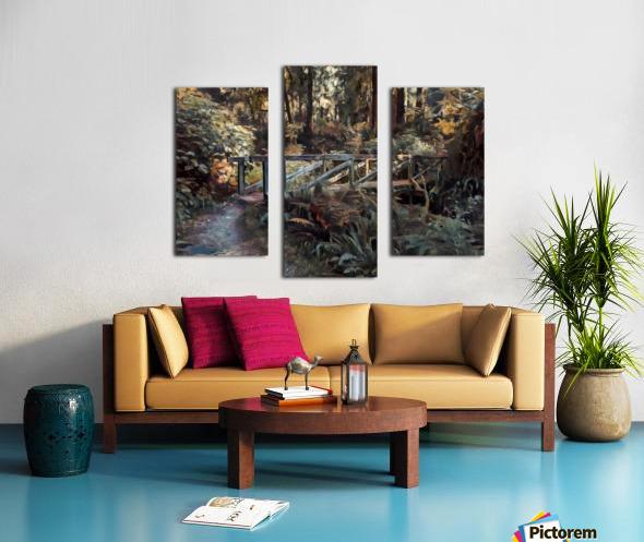 Redwood forrest Canvas print