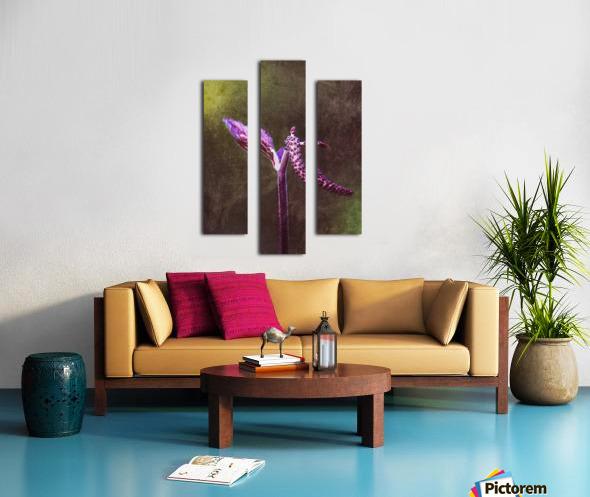 12494253_10153497339628558_1614706987_o Canvas print