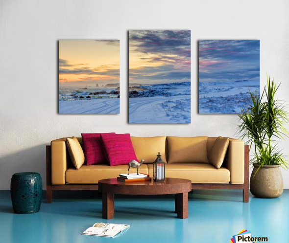 The Colour of Winter Canvas print