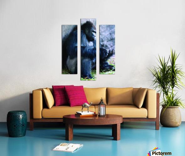 Alone Mountain Gorilla Africa Canvas print