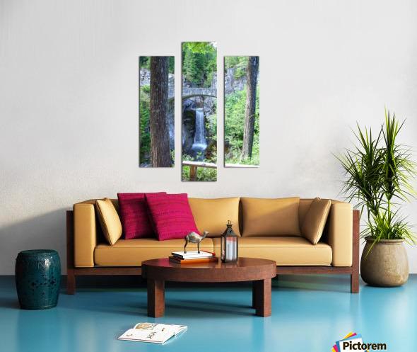 Christine Falls at Mount Rainier Pacific Northwest Canvas print