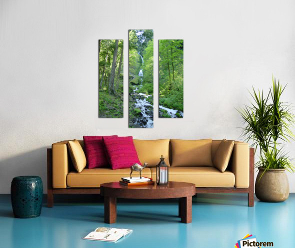 Forest Dreams Canvas print