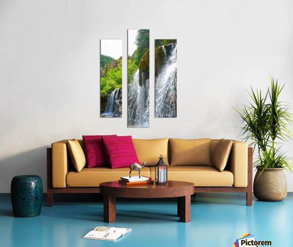Wild Back Country Canvas print
