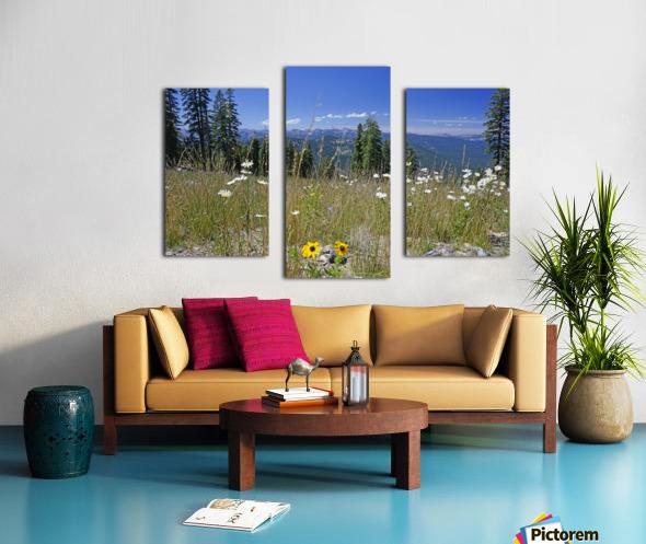 Sierra Nevada in Spring 5 of 8 Canvas print