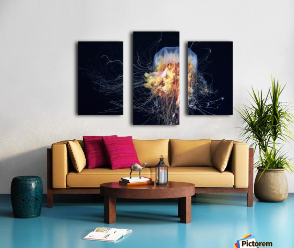Giant Lion's Mane Canvas print
