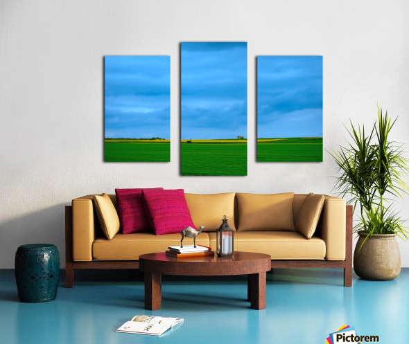 Painted Fields - 2017 Gallery Artwork of the Year - Minimalism Canvas print