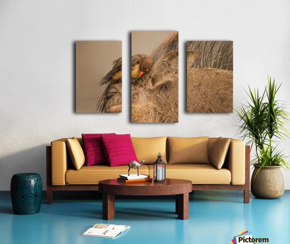 Hideaway by Jaco Marx  Canvas print