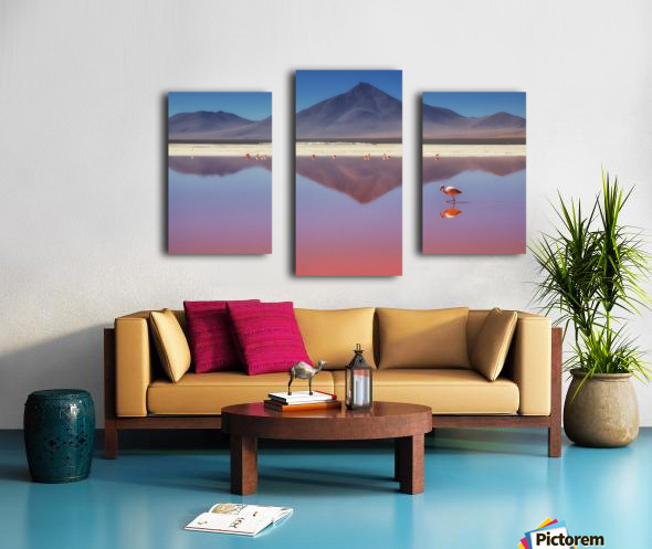 Pink Morning Canvas print