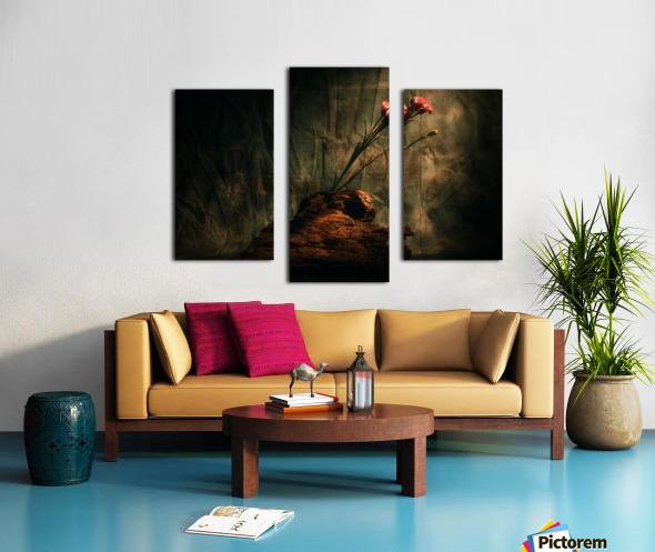 Montagne et Zen Canvas print