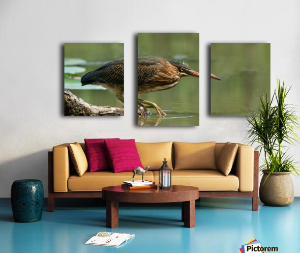 Wading Into The Unknown Canvas print