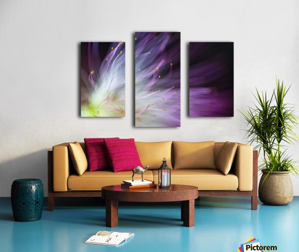 The Will-o-the-Wisp Canvas print