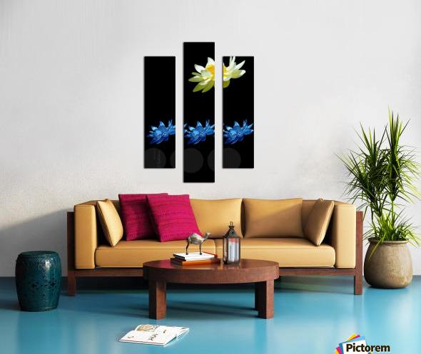 Lotus 1 Canvas print