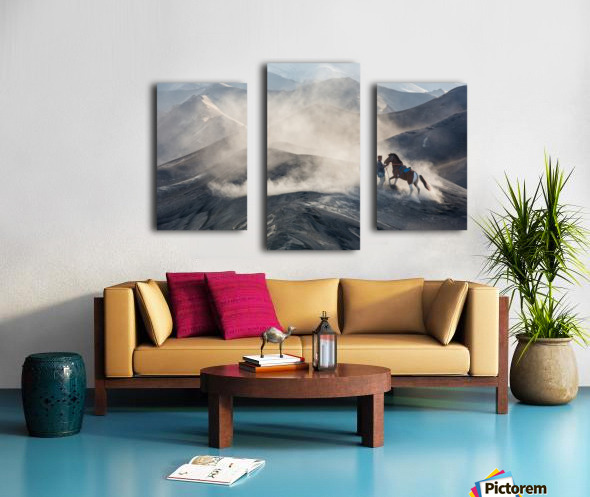 The Horseman Canvas print