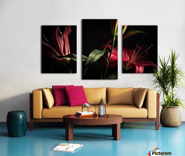 Floraison 2 Canvas print