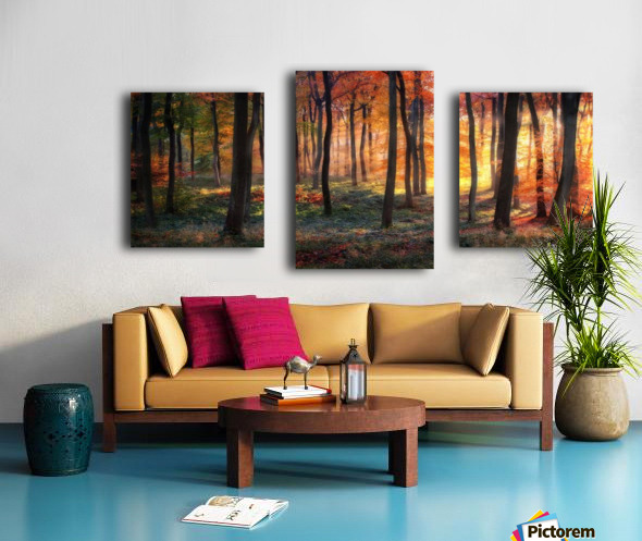 Autumn Woodland Sunrise Canvas print