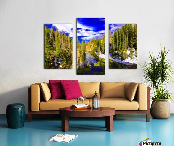DSC00906 Canvas print