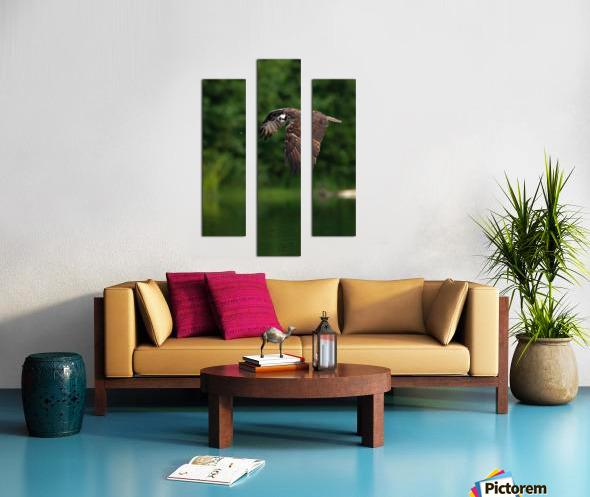 Wesley Allen Shaw 00460 1609734665.9256 Canvas print