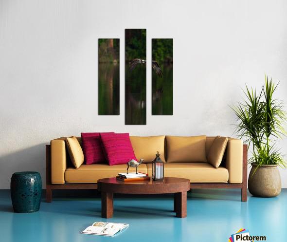 Wesley Allen Shaw 00747 Canvas print