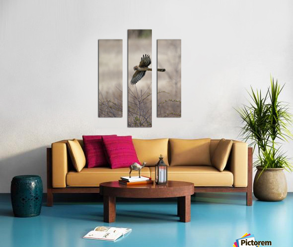 Wesley Allen Shaw 02112 Canvas print