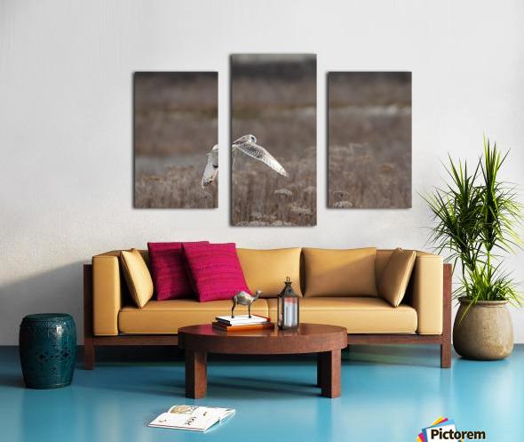 Wesley Allen Shaw 02353 Canvas print