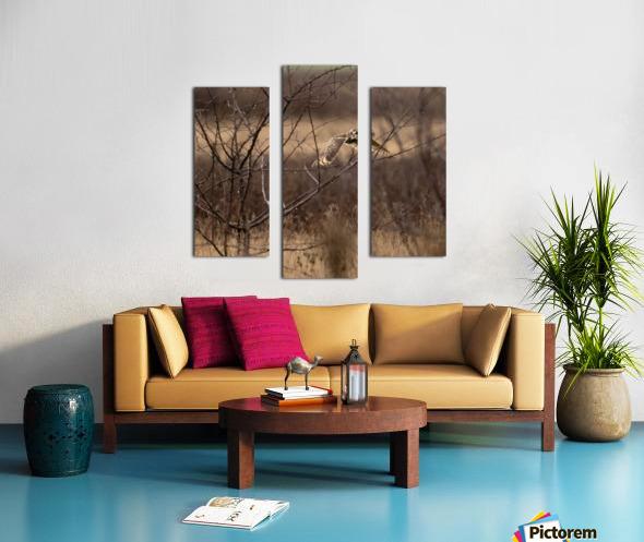 Wesley Allen Shaw 02117 Canvas print