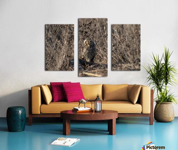 Wesley Allen Shaw 09496 Canvas print