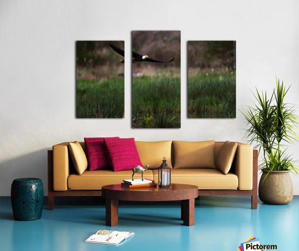 Wesley Allen Shaw 04576 Canvas print