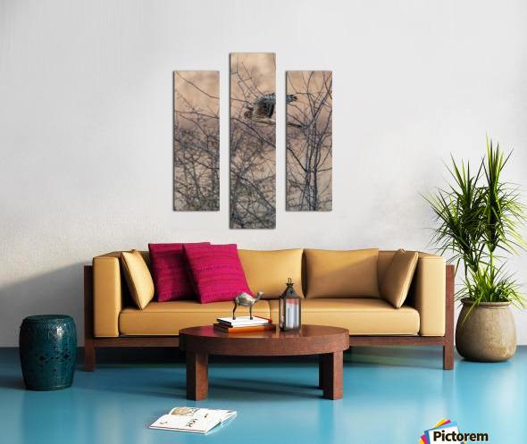 Wesley Allen Shaw 09307 Canvas print