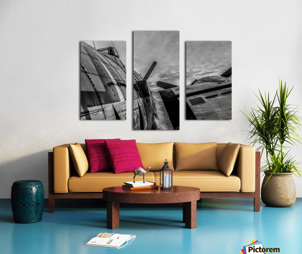 Over The Wing Canvas print