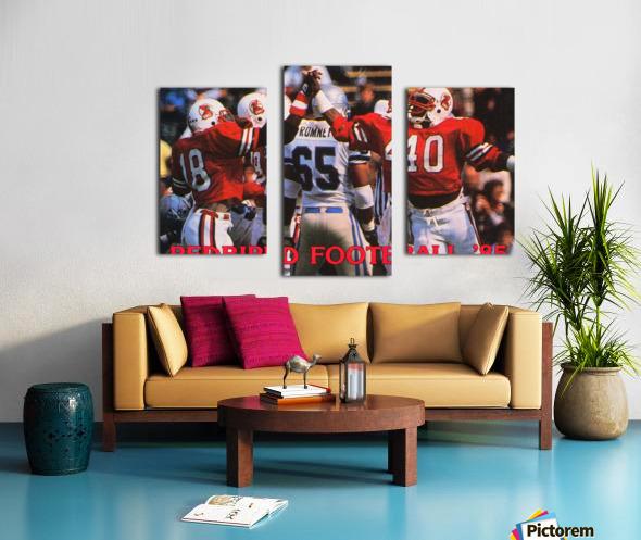 1985 Illinois State Redbirds Football Poster Canvas print